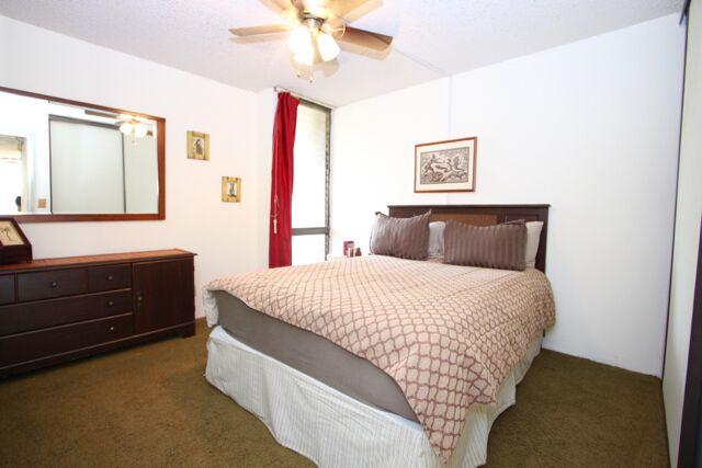 Bedroom has a ceiling fan.