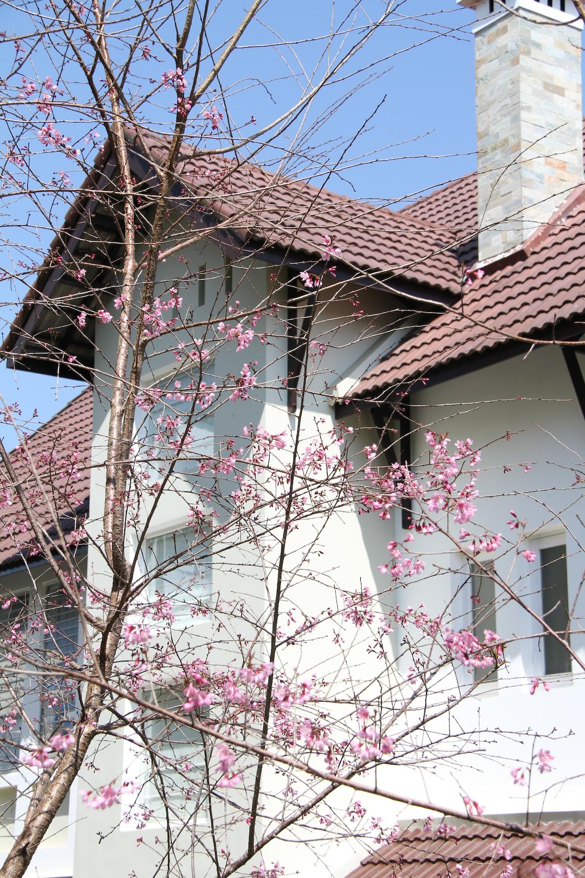 Hoang Loc Villa