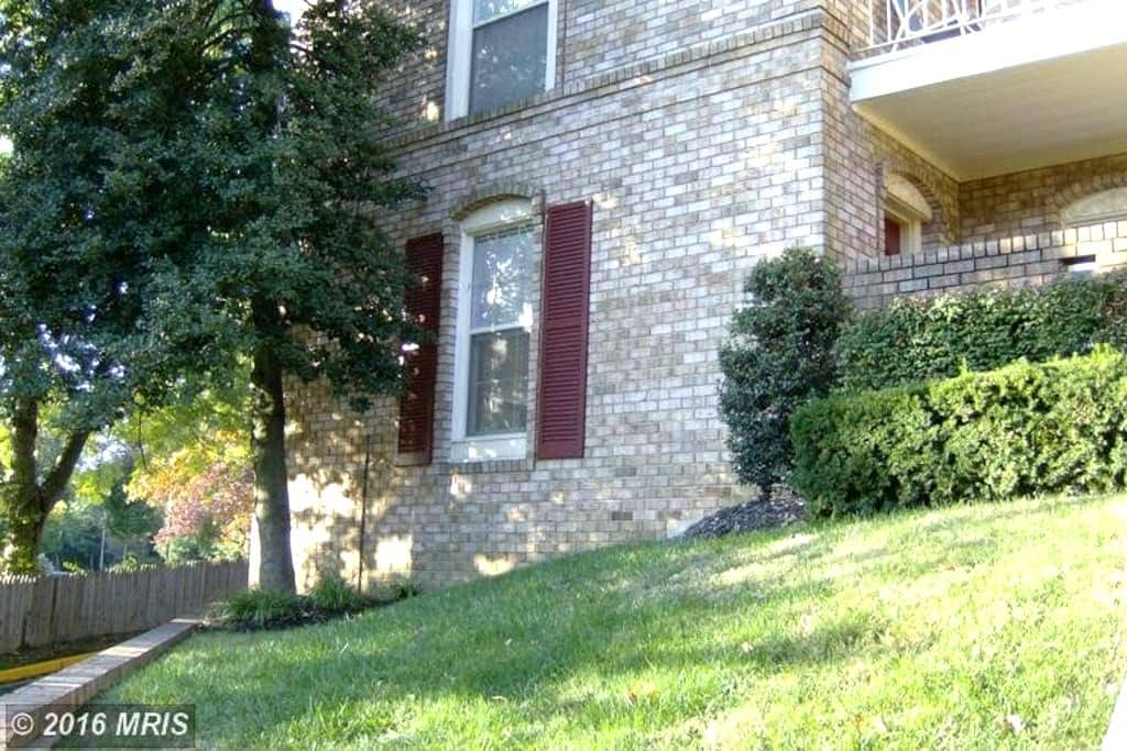 Falls Church Very Cozy and Sunny One Bedroom Condo - Falls Church - Condominium