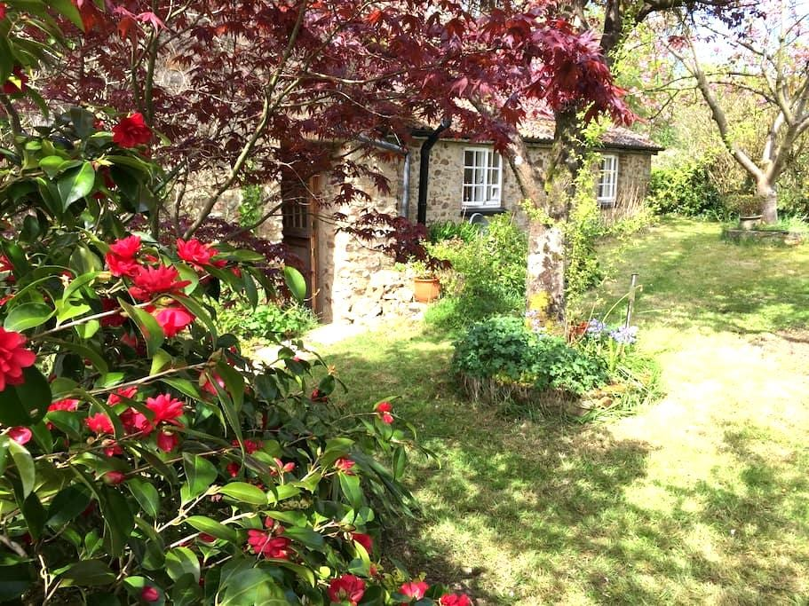 Charming old cottage with garden - Culmstock  - 獨棟