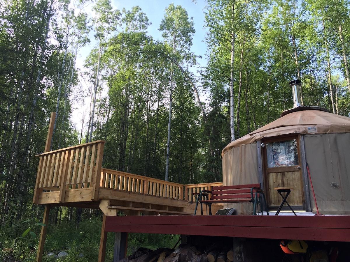 Cozy Yurt in the Woods!