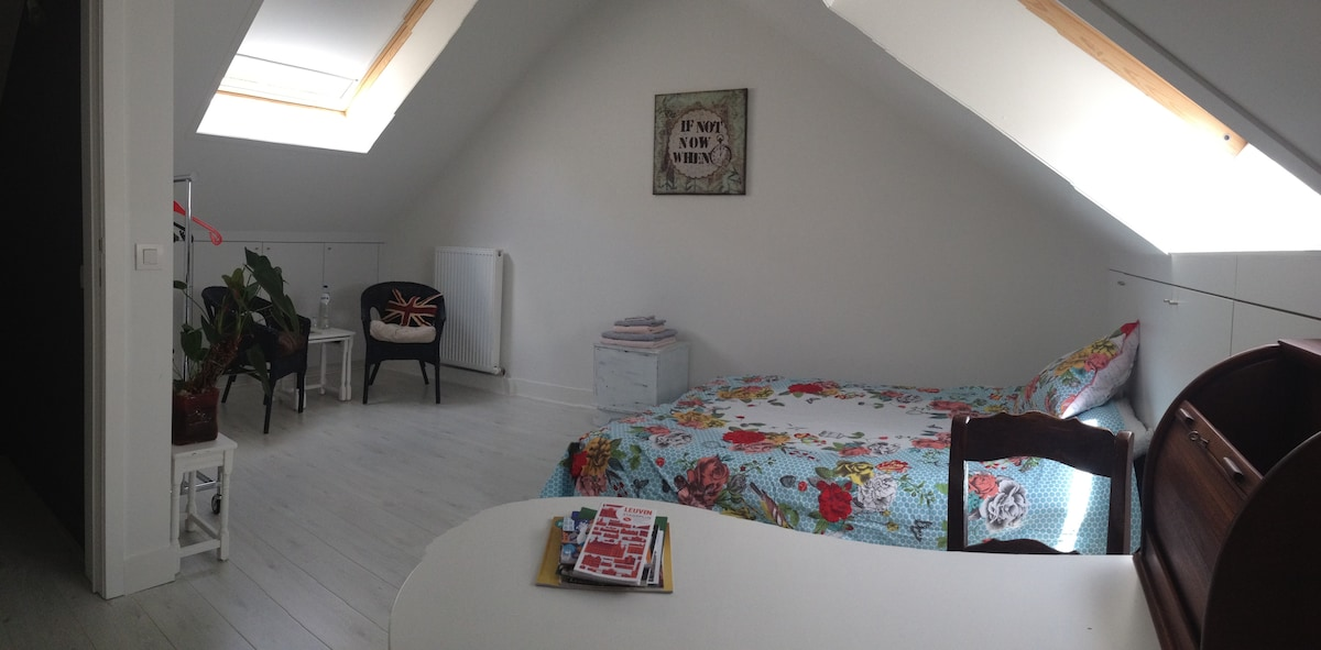 Spacious room in charming house