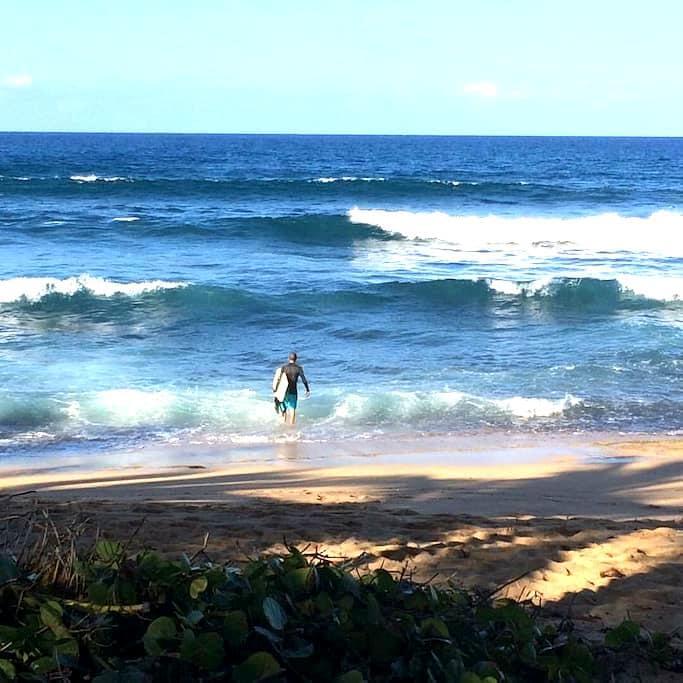 Backpacker's/ Surfer's Delight! - Dorado