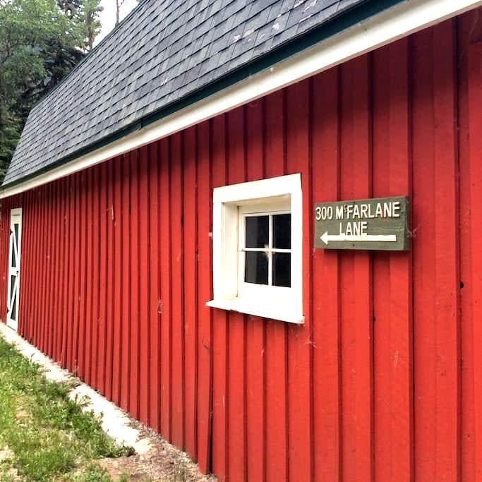 Spacious Ranch House up 82 East - Aspen