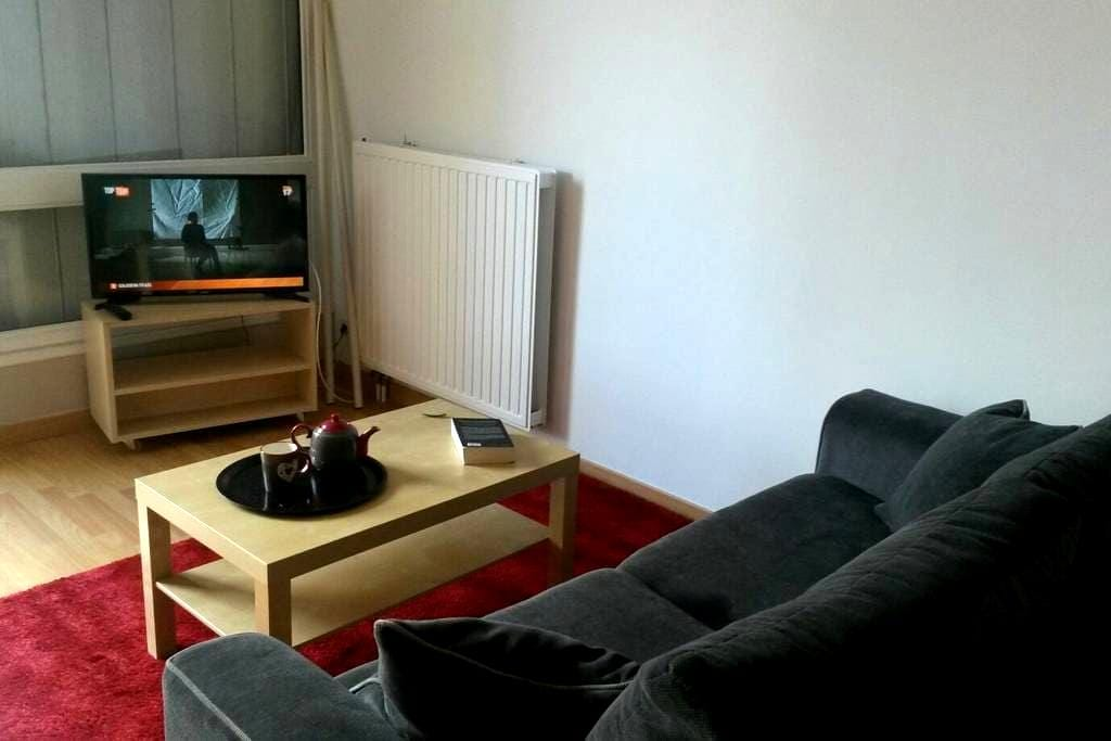 Near Dijon, close to the university, the hospital - Quetigny - Apartment