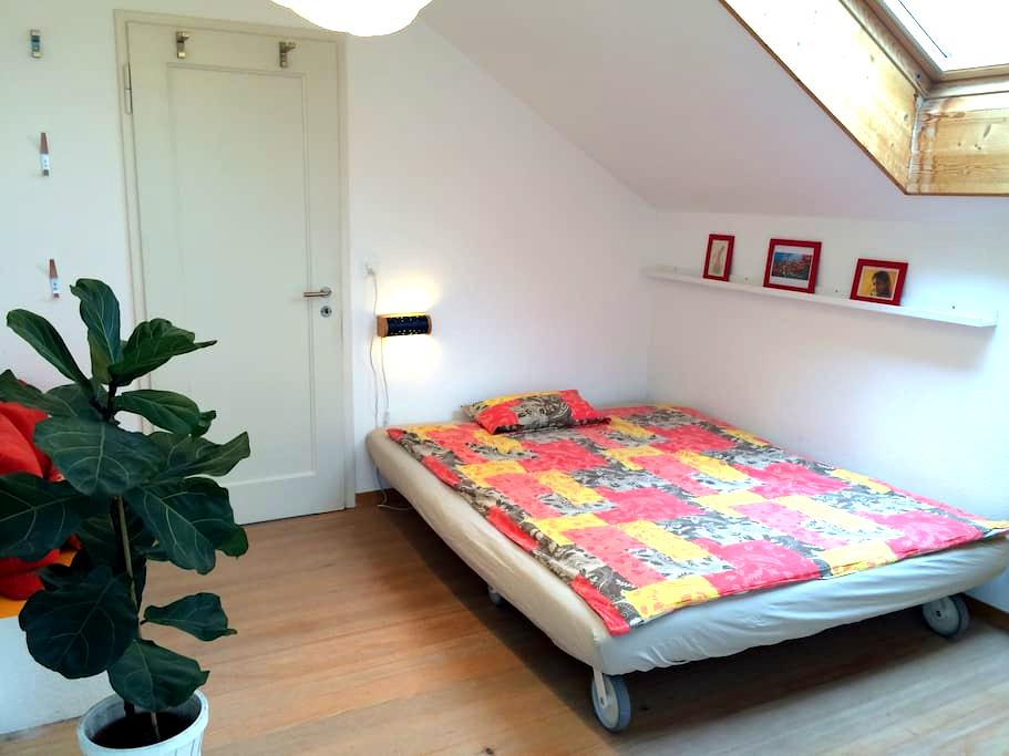 Cozy room with nice green garden - Thun - Dům