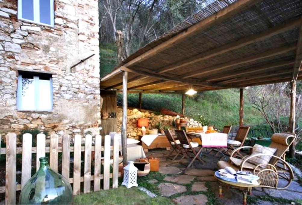 Casa in oliveto con vista mare - กามาโยเร