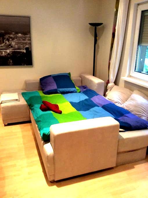 Softroom - 威斯巴登(Wiesbaden) - 公寓