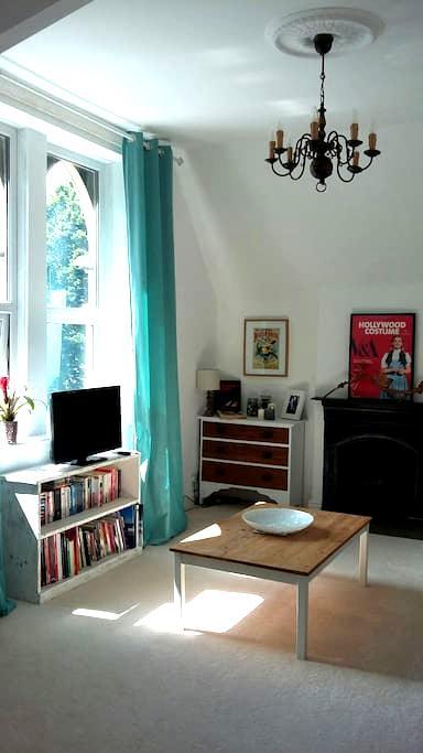Large & Stylish Arty Victorian Flat - Cardiff - Lakás