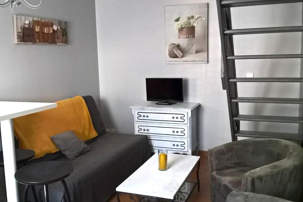 duplex équipé et indépendant a 10 mn du circuit - Brette-les-Pins - Apartamento