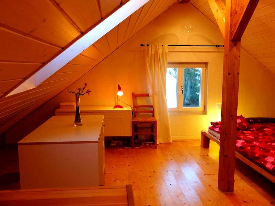 Big Room close to Basel City - Riehen - Dom
