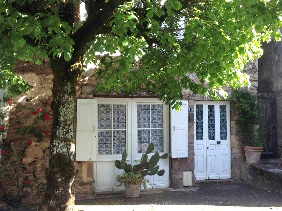 Village House With Large Garden - Juillac - Bed & Breakfast