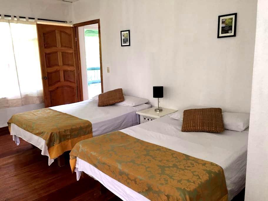 Habitación cuádruple en la selva de Palenque - Palenque - Guesthouse