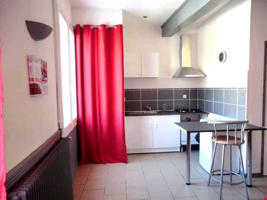 Appartement de plain pied  face à la Garonne - Lamagistère