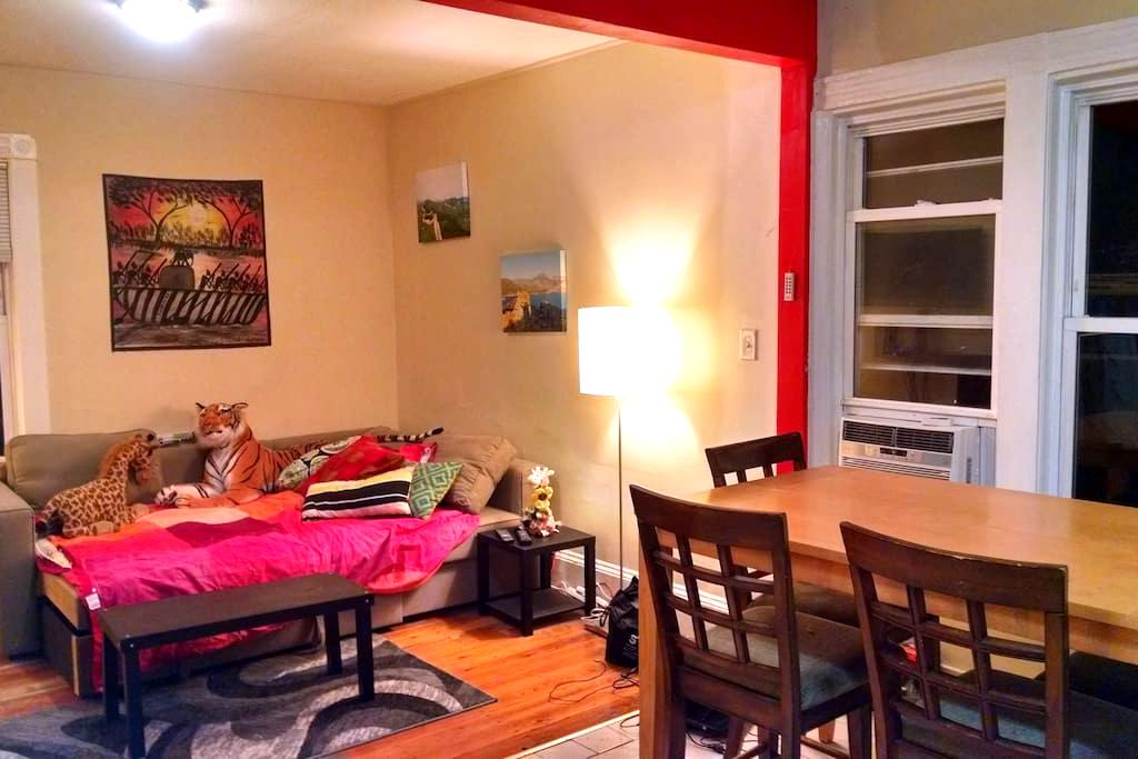Comfortable, Social-friendly Apt - Boston - Apartemen