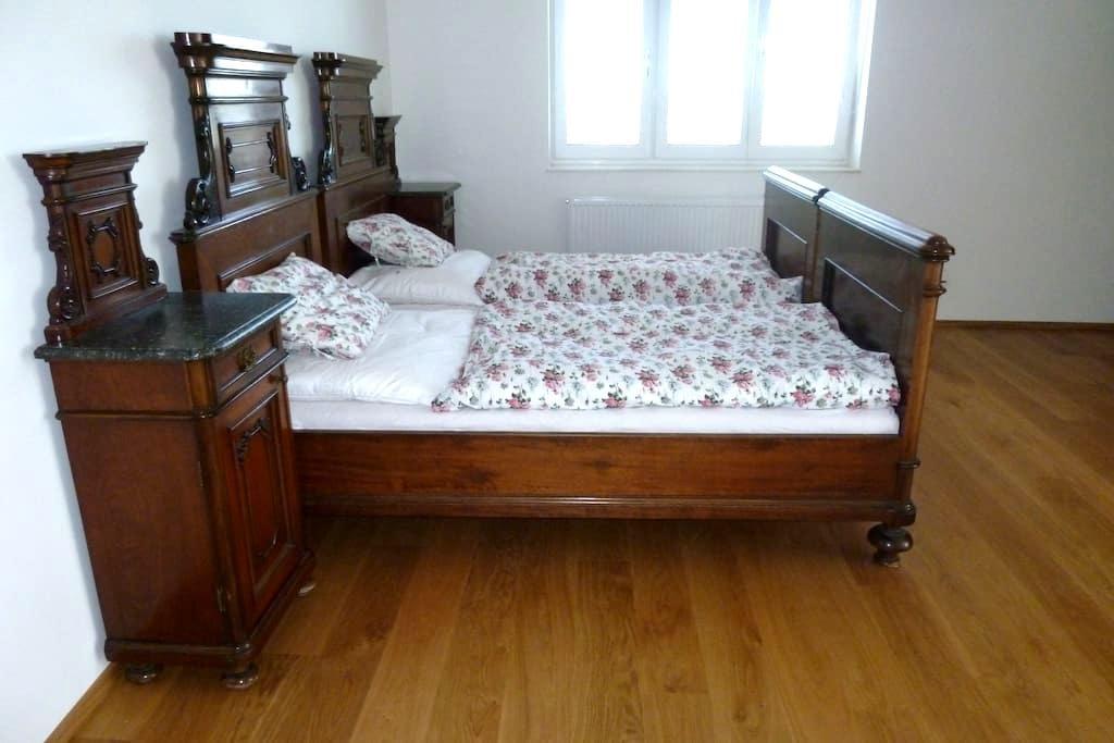 Large rooms in luxury house - Praga - Dom
