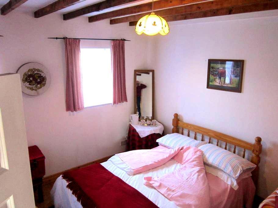 Quaint Thatched dormer Cottage - Arklow - Cottage