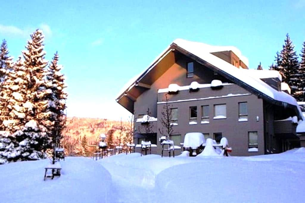Lovely apartment on begest Czech mountains - Harrachov - Wohnung