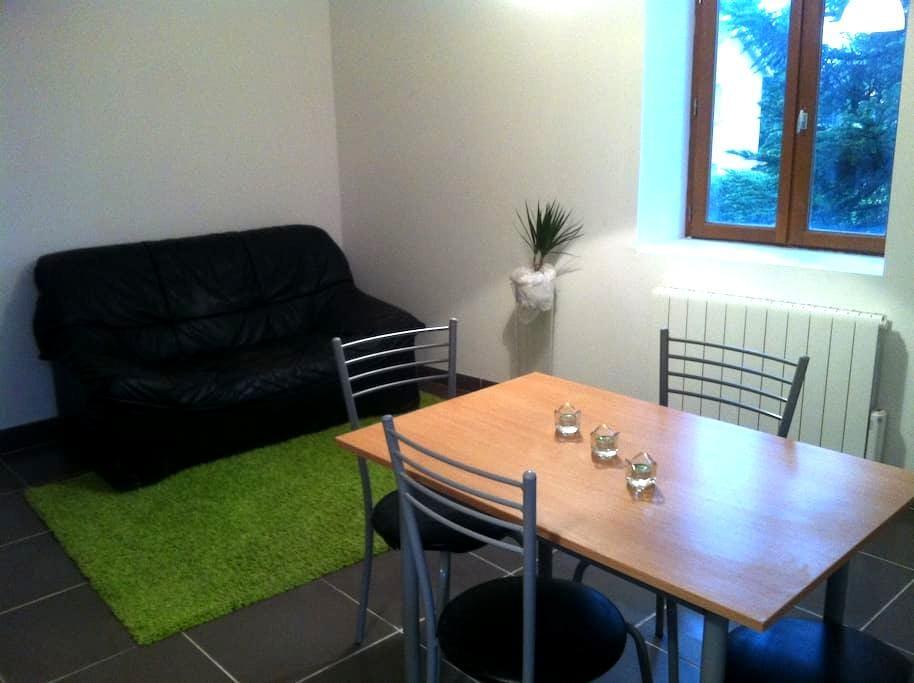 T3 spacieux - Valencin - Apartment