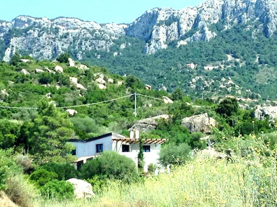 Holiday Flat for Nature Lovers - Dorgali - Apartment