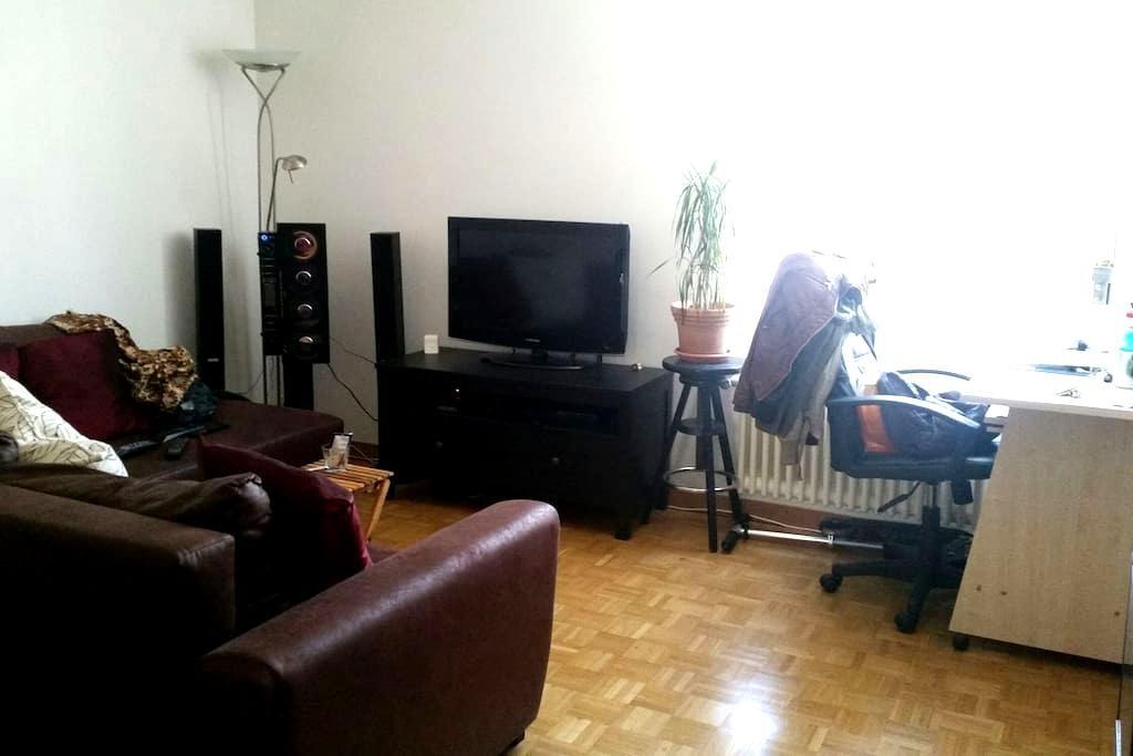 Joli studio au vieux Carouge - Carouge - Apartamento