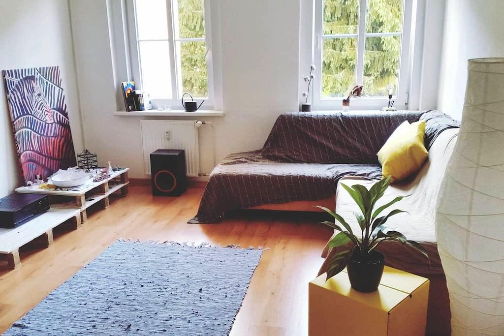 Charming and central room in Prenzlauer Berg - Berlín