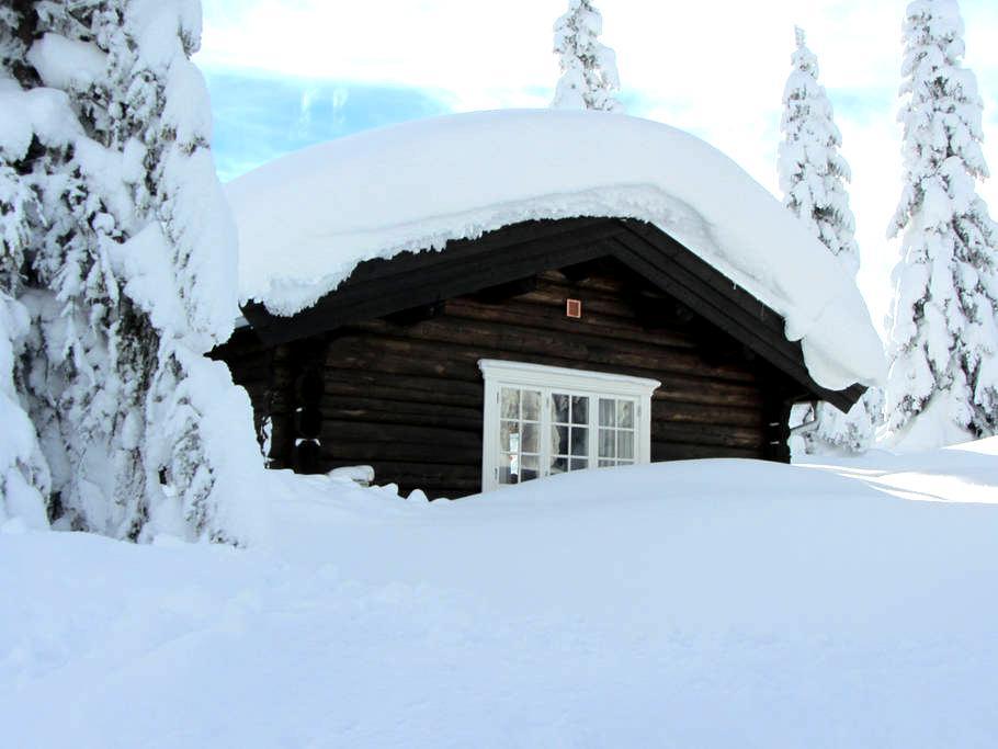 Koselig familiehytte på Skeikampen - Svingvoll