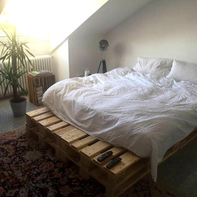 Schicke 1 Zimmer Wohnung - Freiburg im Breisgau - Apartemen