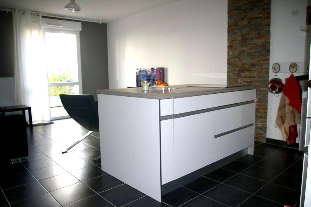 Appartement avec jardin à Lyon - Lyon - Daire