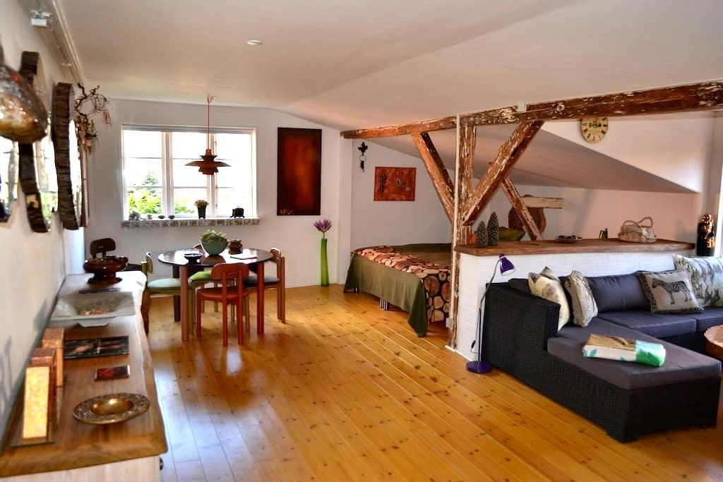 lovely central studio apartment  - Svendborg - Apartment