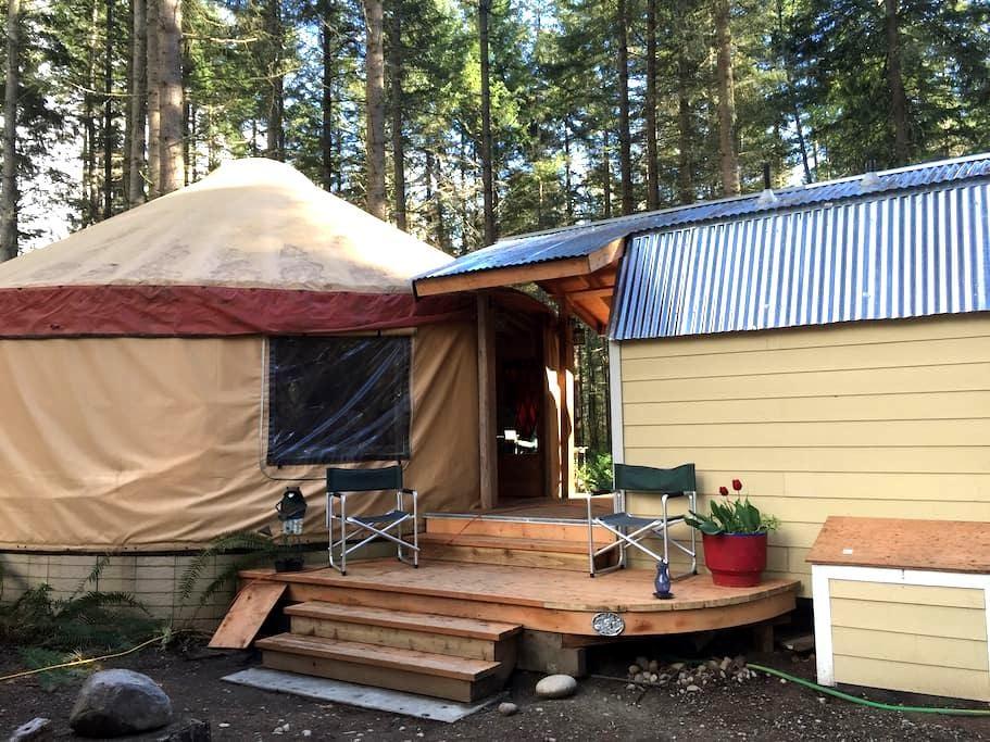 Paisley Paradise Yurt - Roy