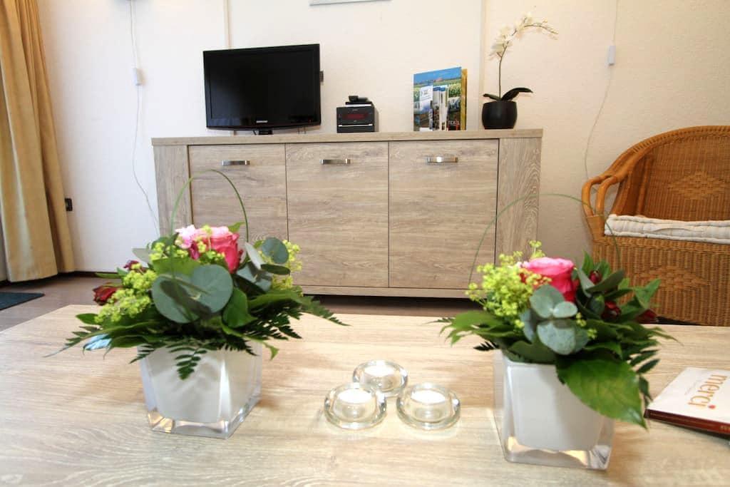 Appartement Strand met Infrarood Sauna Texel - De Koog