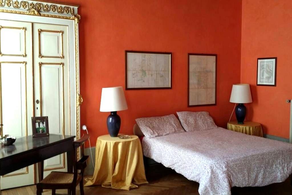 Stupenda matrimoniale affrescata - Piacenza - Apartment