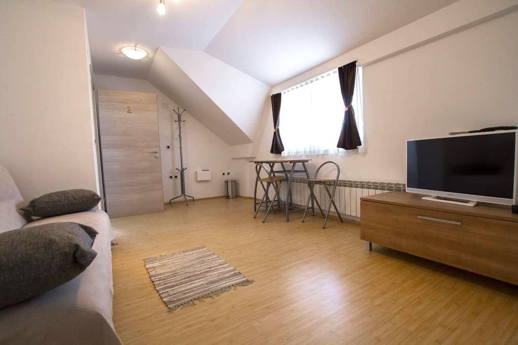 Garden Rooms Pleso 3 - Velika Gorica - Apartment