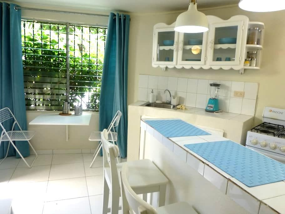 Tiny Hostel Apartment - 2 Blocks from Sea 1-4 pers - Samana - Huoneisto