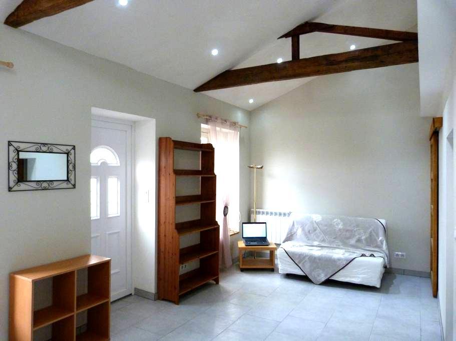 Studio dans maison individuelle 30m2 - Villeurbanne - Huis