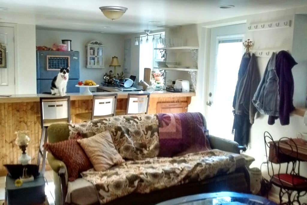 Private apartment 2mi from downtown - Columbia - Byt