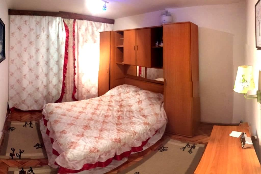 Room for rent in Timisoara - Timisoara  - Leilighet