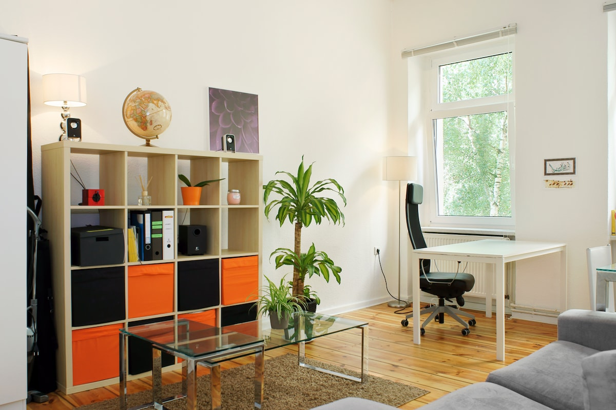 Spacious apartment in central Mitte
