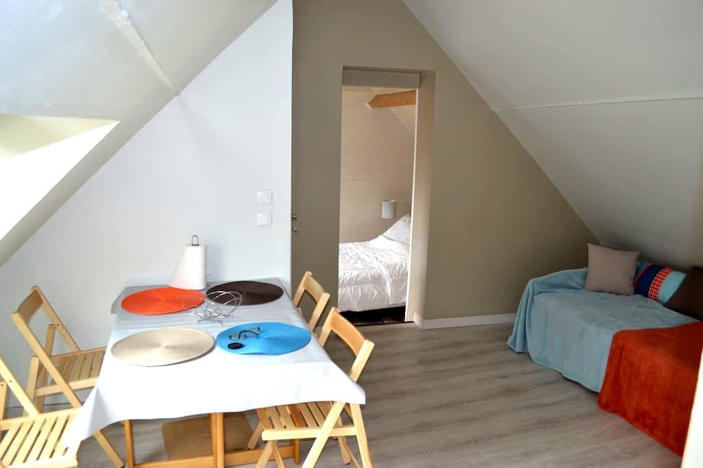 Paisible et cosy à 10 mn de Disneyland Paris - Crécy-la-Chapelle - Apartemen