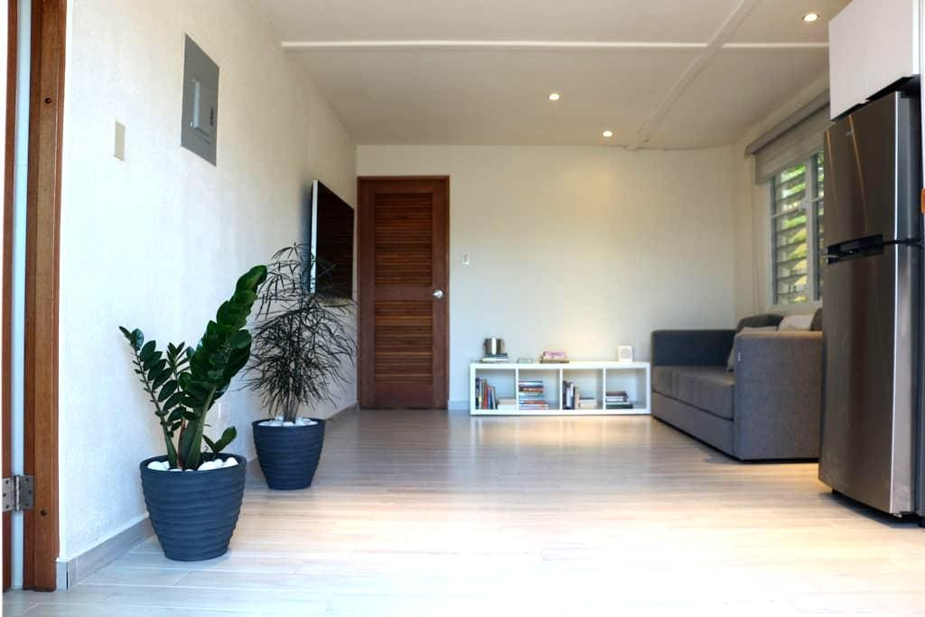 Modern 1 Bed/1 Bath in Dorado steps from the beach - Dorado - Apartament