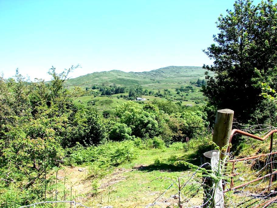 Knockbrack Mountain Retreat, Kenmare. - Kilgarvan - Cabana