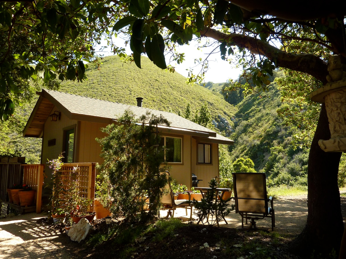 BBQ, dine and relax, surrounded by redwoods, oaks & madrones!