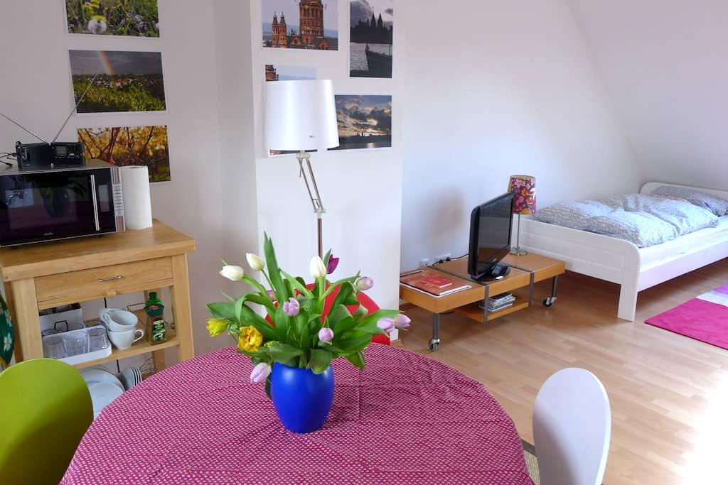 Bright and Clean Rooftop Apartment, Own Bathroom - Mainz - Townhouse