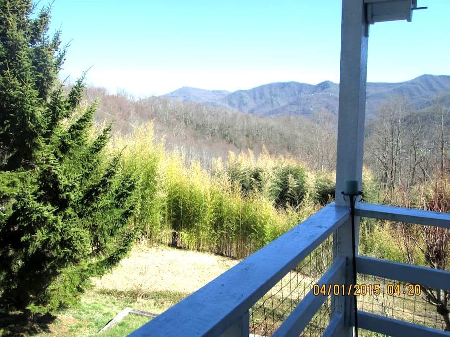 Owl Vacation Home-Incredible Views-Sleeps 7-Hottub - Maggie Valley - House