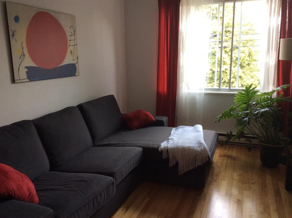 Bel appartement ensoleillé Rosemont