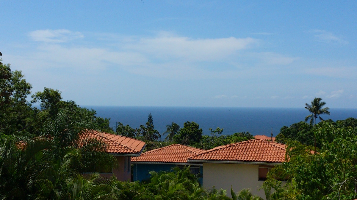 FROM THE HOUSE OCEAN VIEW