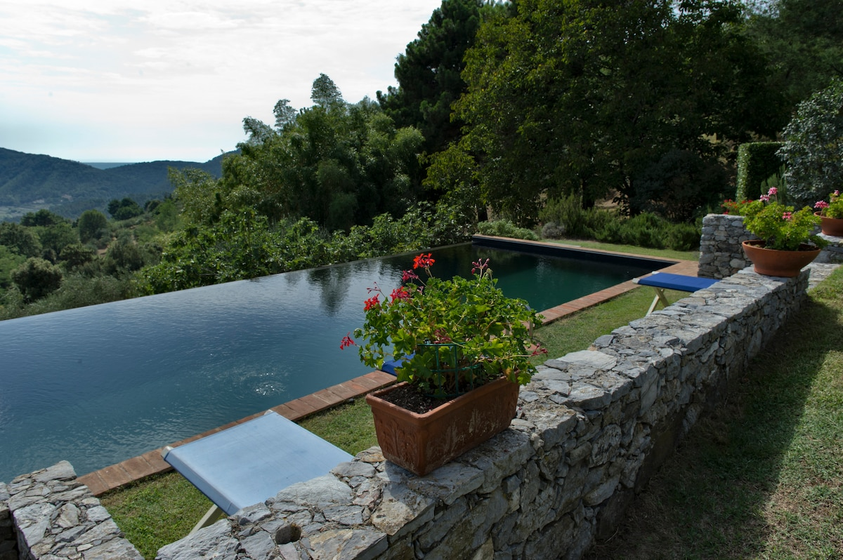 The Infinity Pool and the view