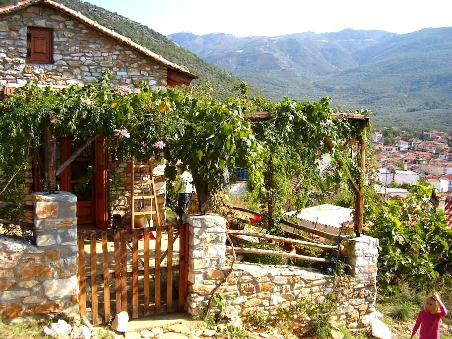 Small stone house for rent          - Prinos - House