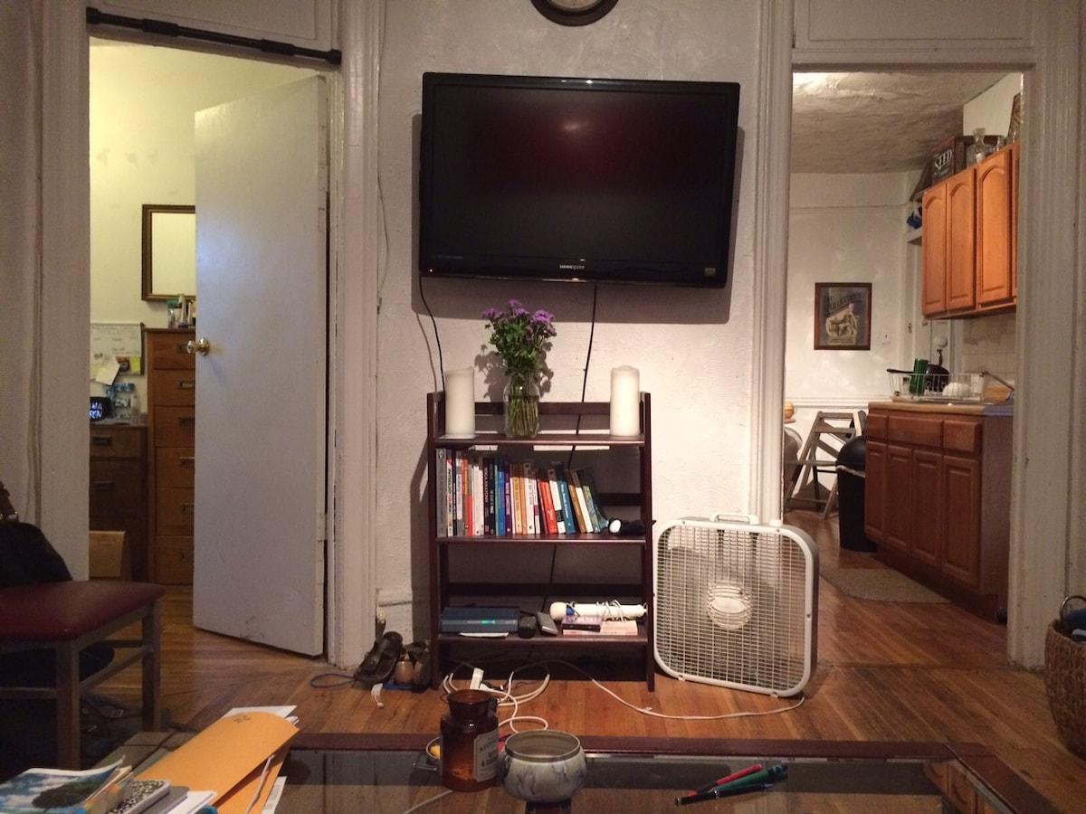 Sunny, cozy room in S. Williamsburg